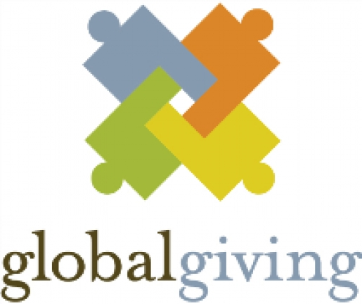 THE GLOBAL GIVING FOUNDATION